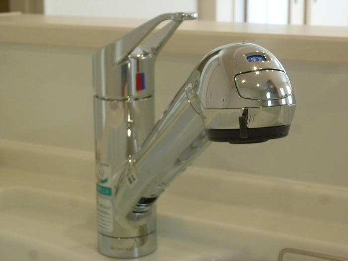 キッチンは浄水器内蔵ハンドシャワー水栓